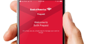 Bank of America CashPay Card Review
