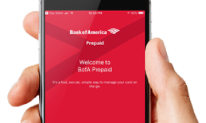 BankofAmerica CashPay Card Review