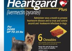 Save with Nexgard and Heartgard Rebates & Coupons